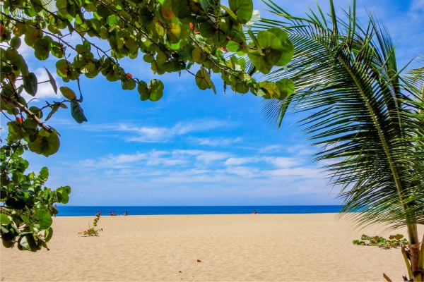 Купить тур на Барбадос
