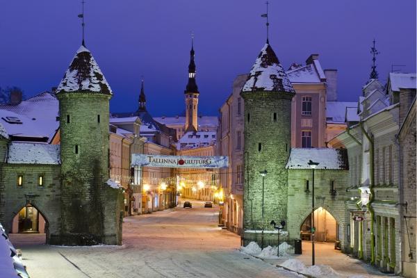 Тур в Эстонию