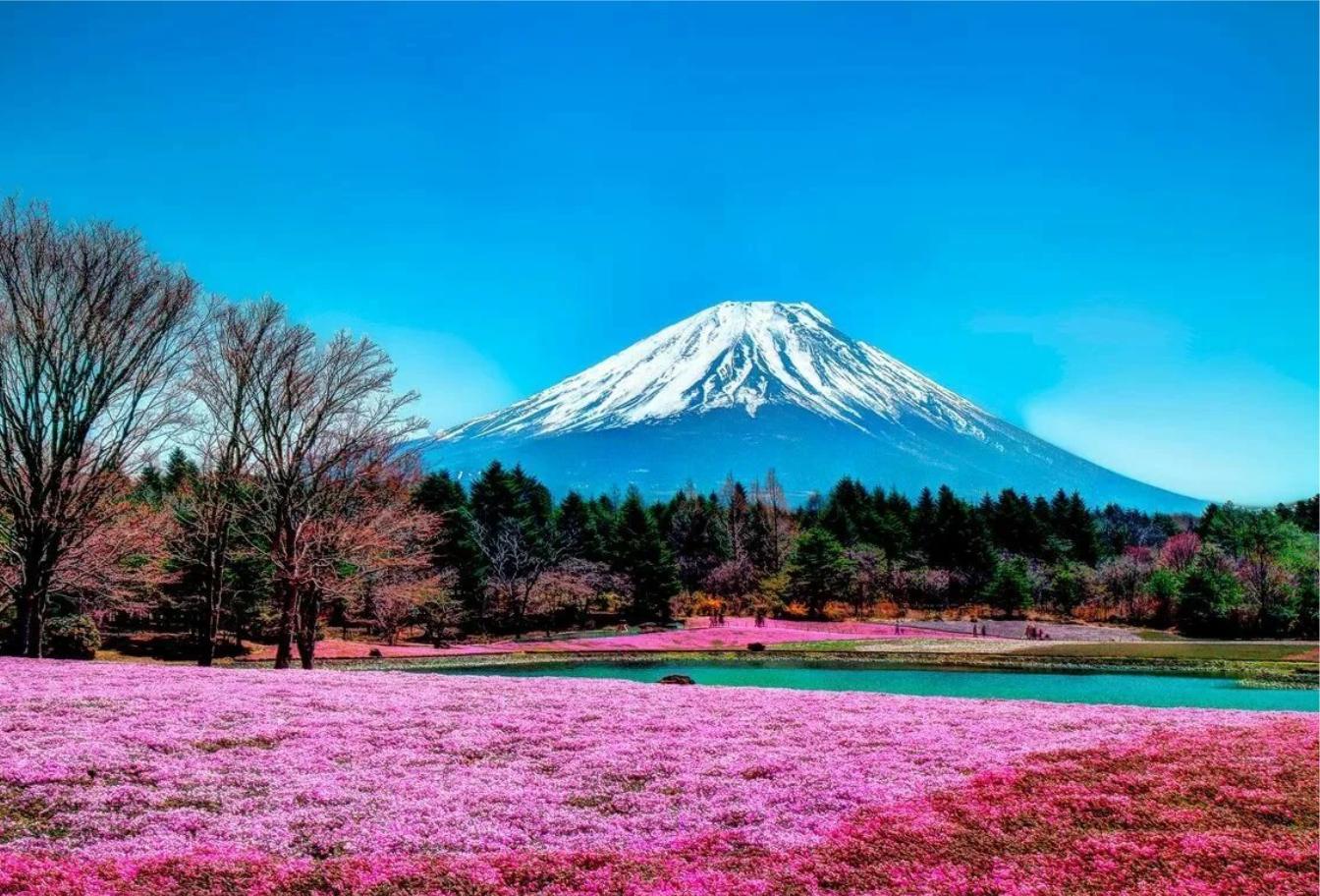 Купить тур в Японию Тут Тур