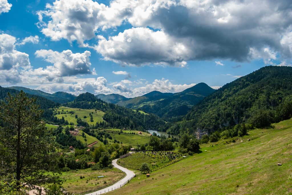 гора Тара в Сербии