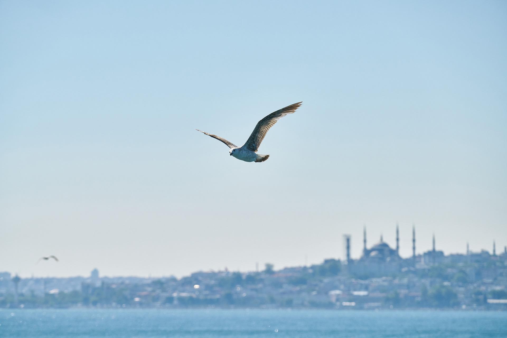 Туры в Турцию в марте