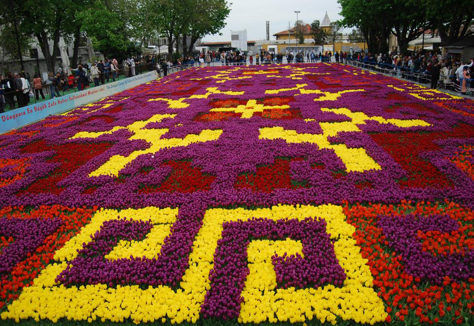 Тюльпаны в парках Турции