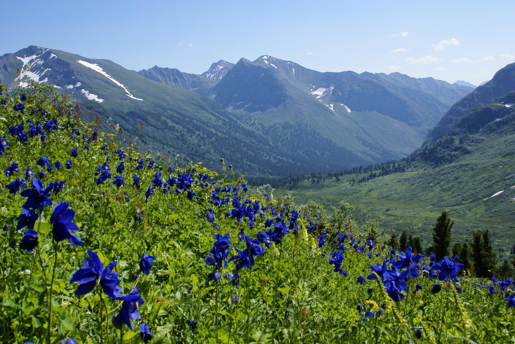Горы Иркутской области