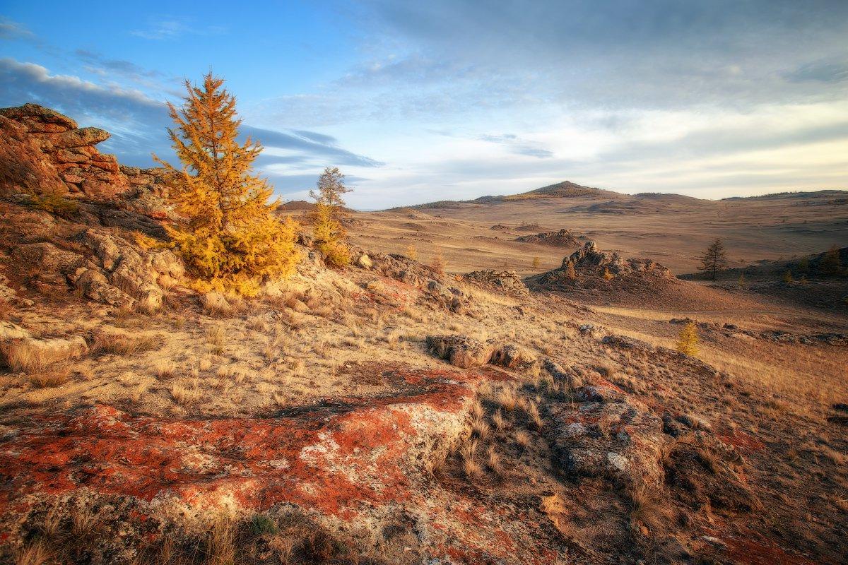 Пейзаж Тажеранской степи